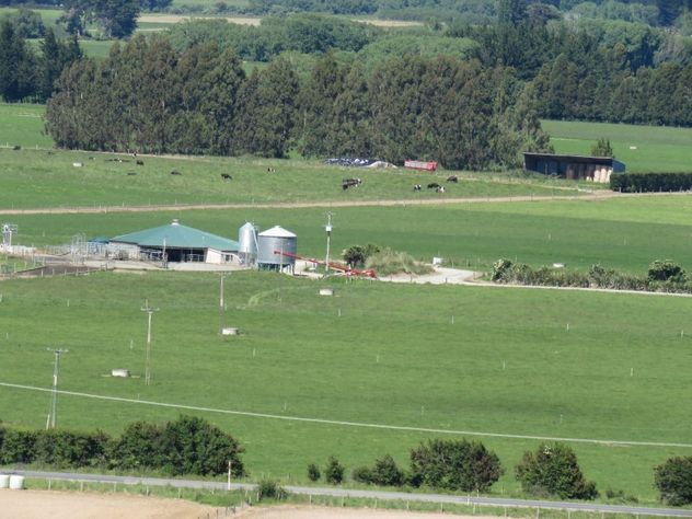 Dairy Farm With Options