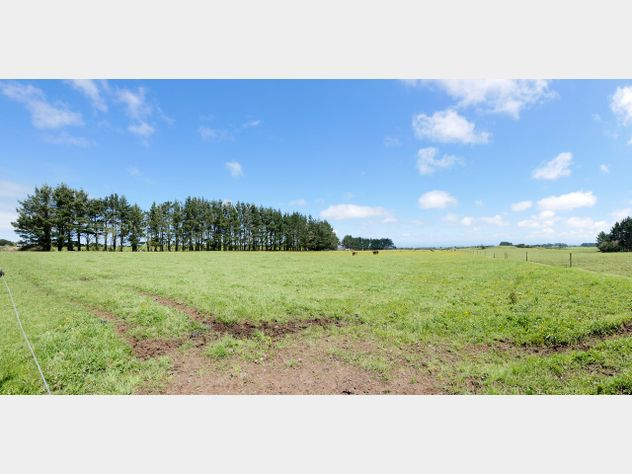 79 Hectare Grazing Block with Potential